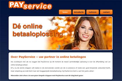 TSA Group Delft bv - PayService screenshot website oranje